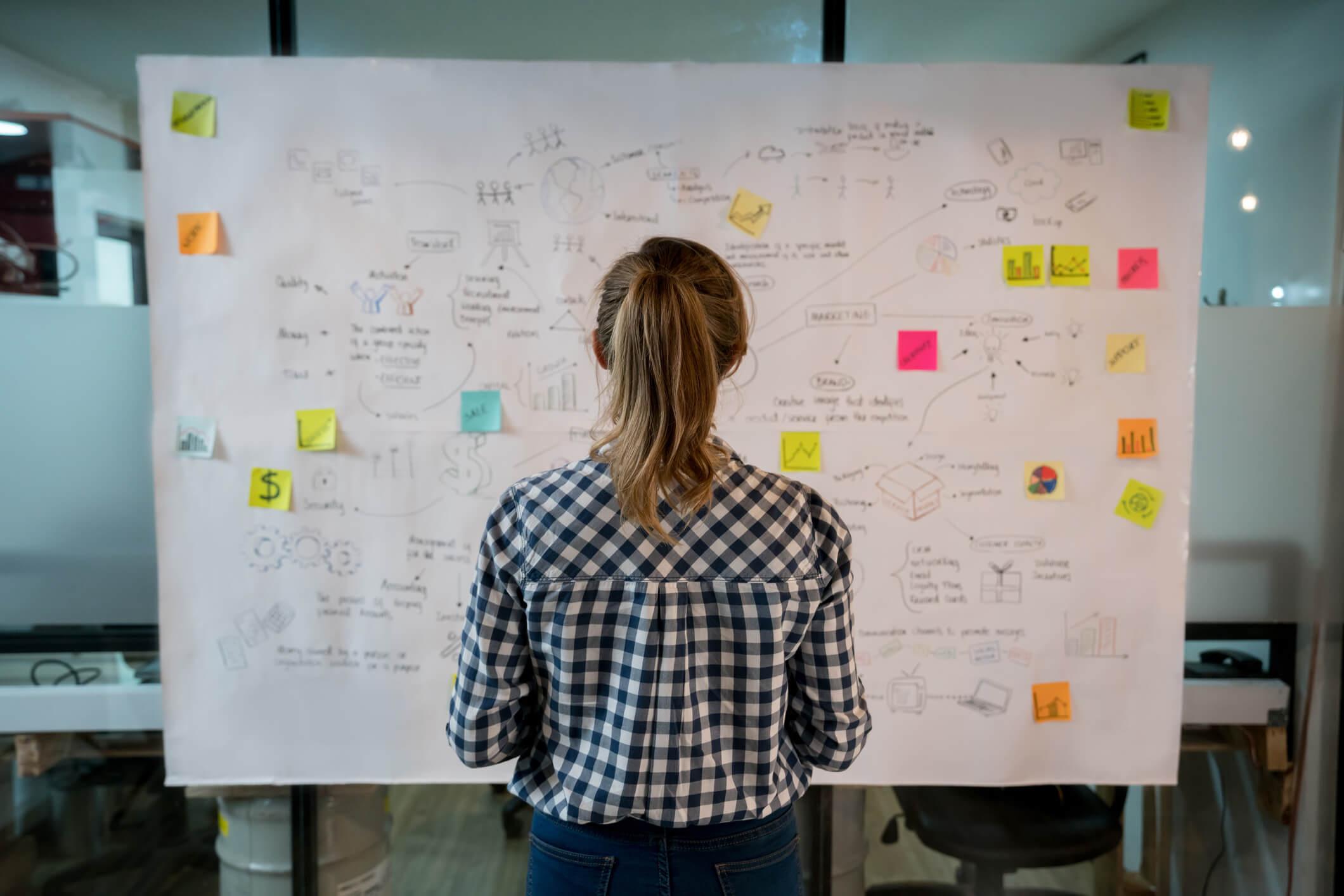 Descubra a importância de um ERP para o Back Office